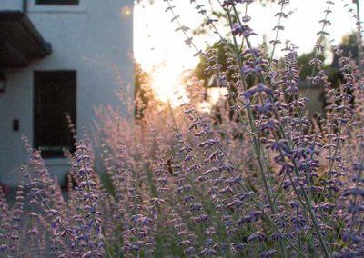 Historic Retreat - Lavender